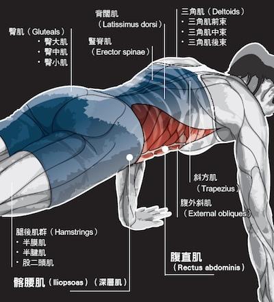 plank2.jpg