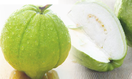 水果9.png